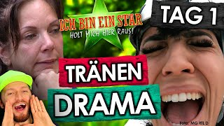 Dschungelcamp 2020: Wendler-Story & Elenas Zoff! Tag 1