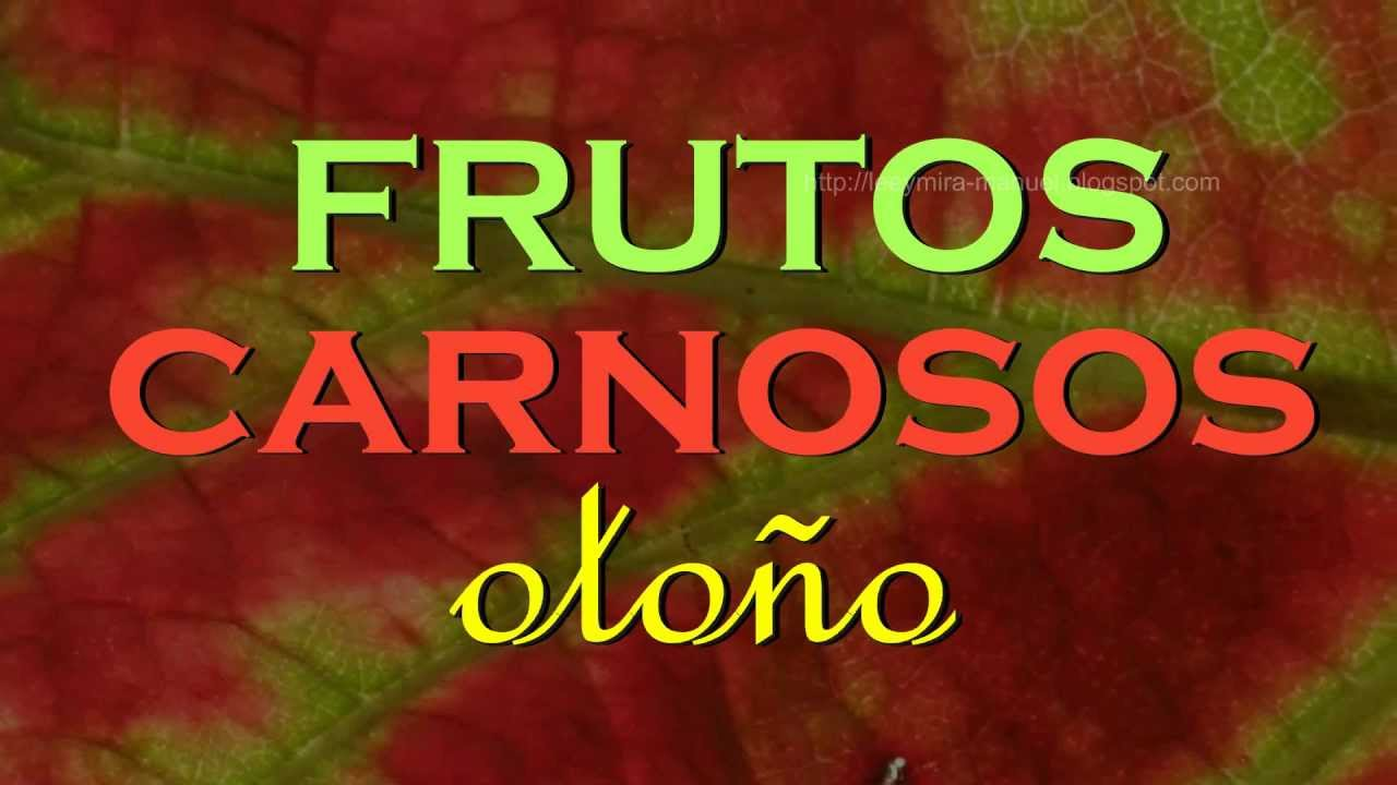 FRUTOS CARNOSOS otoño - YouTube