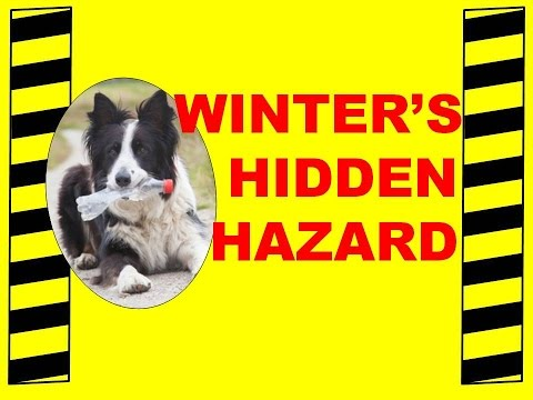 Winter's Hidden Hazard - Cold Weather Health & Safety - Safety Training Video