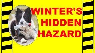Winter's Hidden Hazard - Cold Weather Health & Safety - Safety Training Video