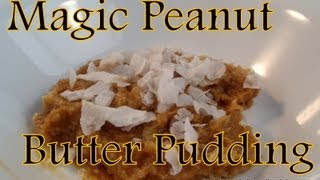 Atkins Diet Recipes: Low Carb Magic Peanut Butter Pudding (owl)