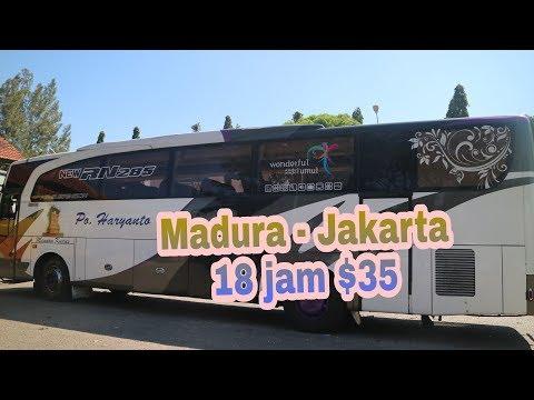 Sensasi Naik Bus Executive HARYANTO bikin Jantung Berdebar Melawan Arah