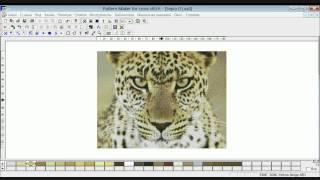 Разработка схем по фото в программе Pattern Maker