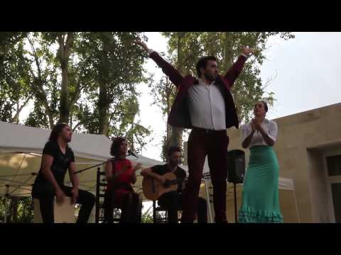 FIESTAS FLAMENCAS PARA EVENTOS ( Cuadro Flamenco)