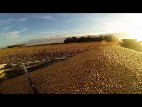Loncorich Family Farms 2013 in Review