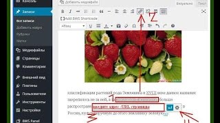 Сделать ссылку wordpress. Урок 12