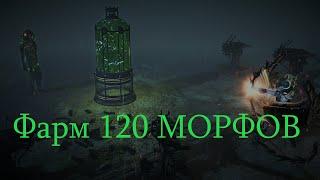 Фарм 120 метаморфов - Metamorph's farm