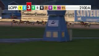 Vidéo de la course PMU LOPP 3