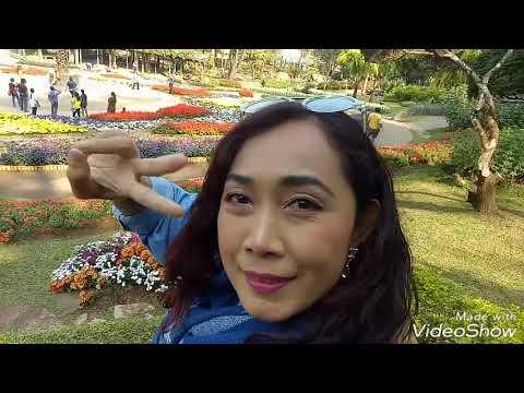 สวนแม่ฟ้าหลวง เชียงราย Mae Fah Luang Garden Chiang Rai Thailand.