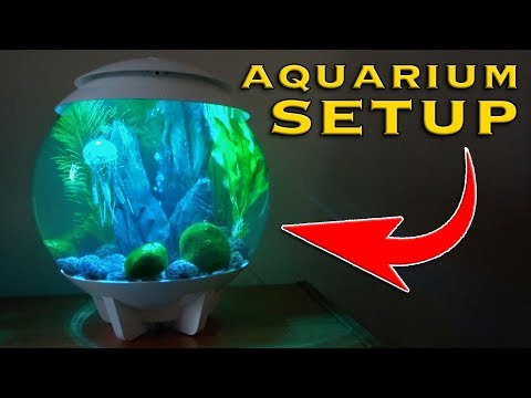 Setting up a BiOrb Aquarium