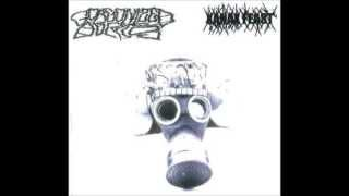 Gorgonized Dorks - Will The Light Of Apophis