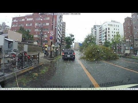 【倒木・停電・崩落】台風21号通過直後の大阪市内は、えげつない状況に!