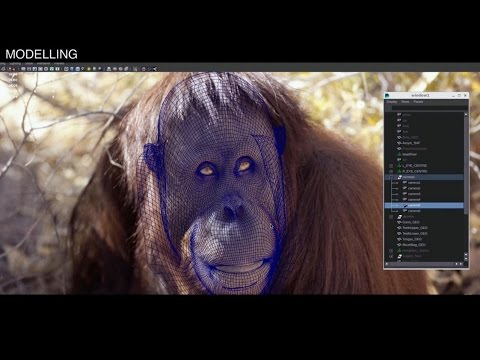 "SSE uses The Mill for energy commercial - ""Amazingly realistic Orangutan animation"""