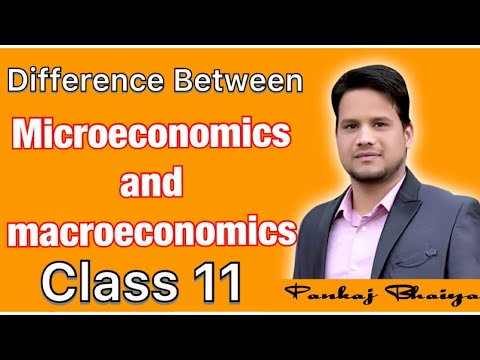 Difference between microeconomics and macroeconomics class 11 chapter 1 economics and economy hindi