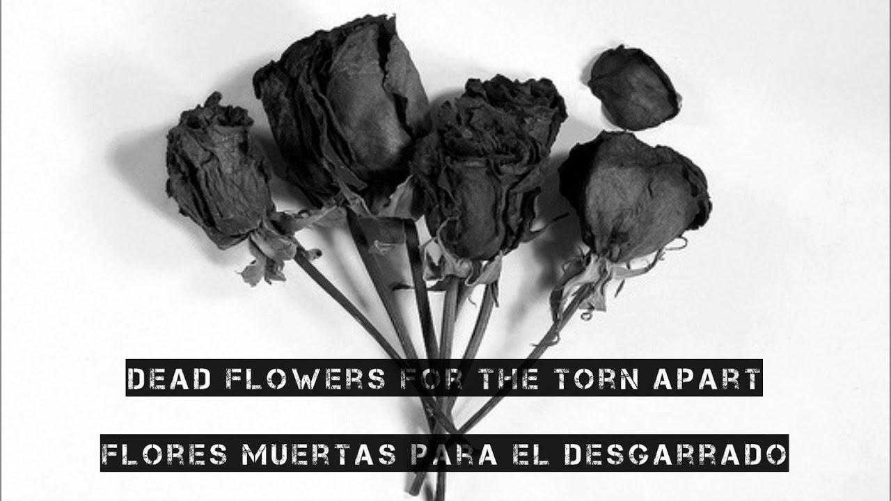 Dead Flowers Demon Hunter Lyrics Subttulos Youtube