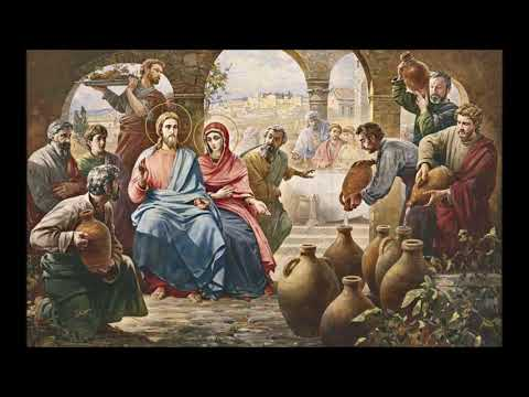 Immaculate Conception Novena 7: Do Whatever He Tells You