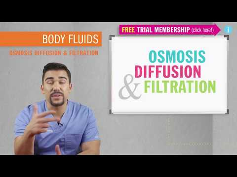 Osmosis Diffusion Filtration
