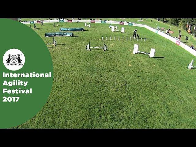Small Grade 7 Jumping - Part 2 | International Agility Festival 2017