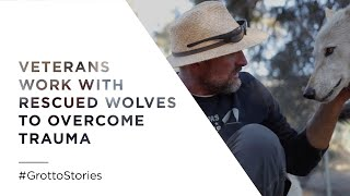 WOLFS AND WARRIORS~ Veterans Work with Rescued Wolves to Overcome Trauma