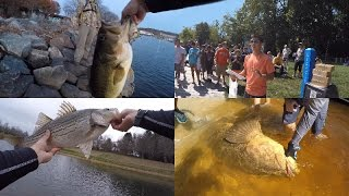 1rod1reelfishings top 20 catches of 2015