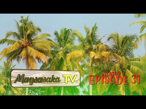 Coconut Farming (Episode 31)