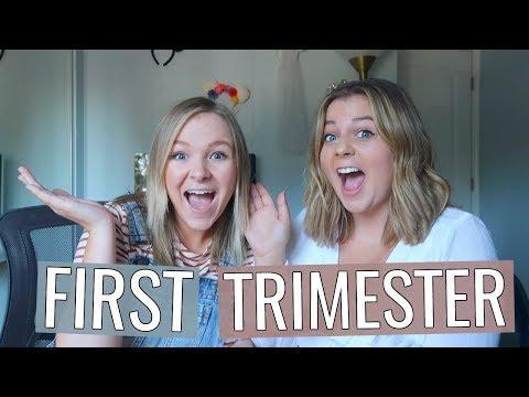 Skylar's First Trimester of Pregnancy + How She Told Me (secret footage)