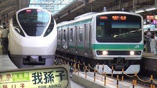 【60p】常磐線の電車@東京駅 E657系・185系・E531系・E231系 到着・出発シーン 【上野東京ライン】