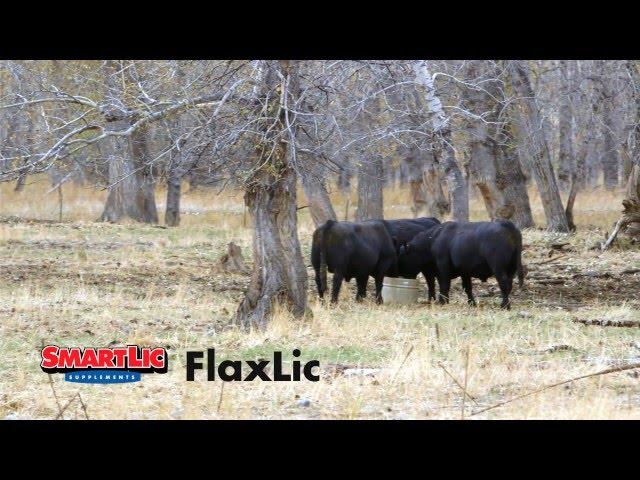 SmartLic FlaxLic Commercial
