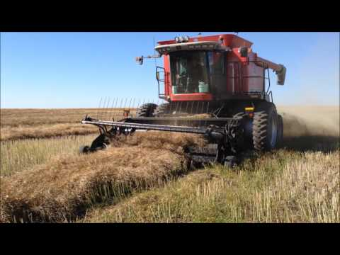 Canola Camp Video 2016