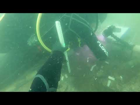 Divers examine ancient archaeological site found in Gulf of Mexico near Venice