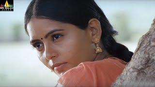 Lajja Hindi Songs Jukebox | Latest Video Songs Back to Back | Sri Balaji Video