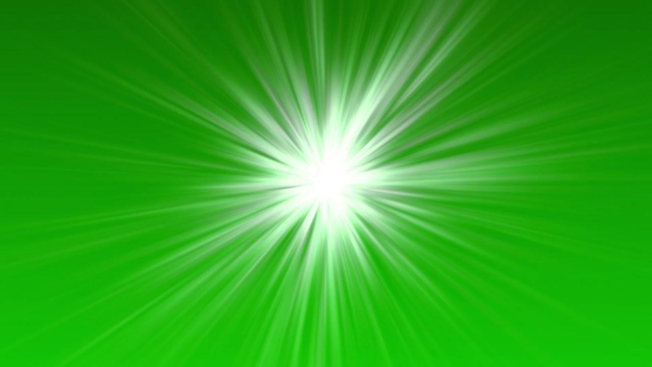 Special green массимо дутти магазин распродаж