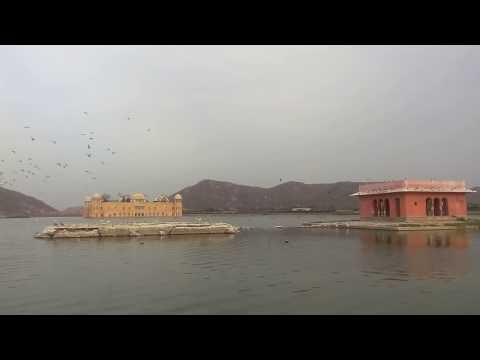 Jal Mahal Lake(Jheel) Jaipur Rajasthan! A famous place! Tourist Place!
