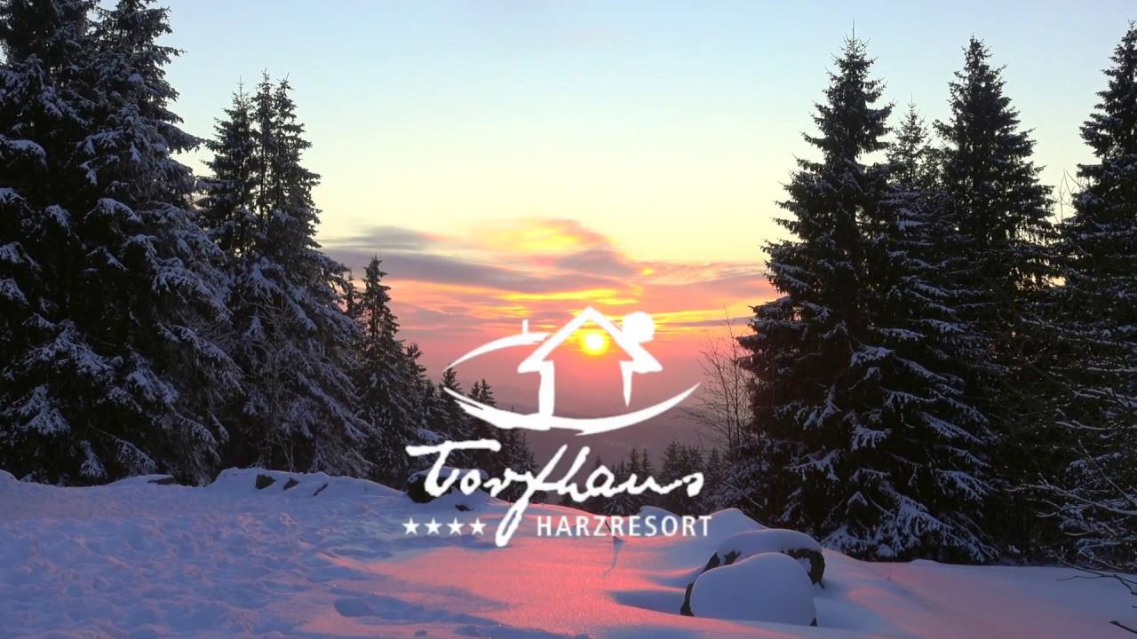 harz resort torfhaus