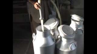 Best Practices in Punjab - Dairy Farming in Village Bahadurpur (Ropar)