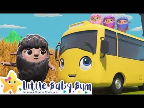Buster and Baa Baa Rainbow Sheep | Nursery Rhymes | Go Buster | ABCs and 123s