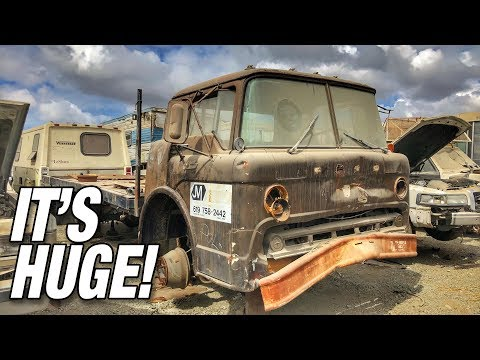 Finding The LARGEST Junkyard Find Yet!