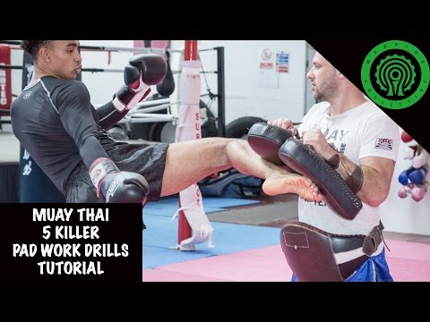 Muay Thai 5 Killer Pad Work Drills to develop Countering Tutorial