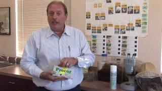Flea Control : How to Kill Indoor Fleas