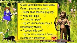 Сидят две бабки на завалинке.. Смешные Анекдоты с  Екатериной  Мироневич Юмор Смех Шутки Выпуск 6