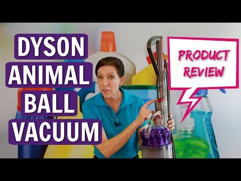 Dyson Animal Ball Vacuum Product Review