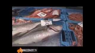 LA LONJA DEL PESCADO de Palamos, LLotja del peix de Palamos GIRONA