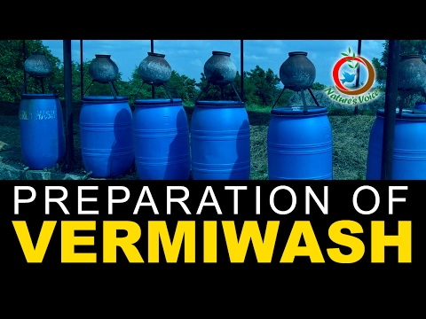 Natural Fertilizer | Preparation and Advantages of Vermiwash
