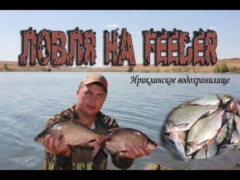 рыбалка на фидер на ириклинском водохранилище
