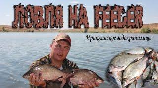 ЛОВЛЯ НА ФИДЕР. Рыбалка на Ириклинском вдхр.