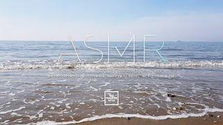 봄 | 서해 | 충남 태안 신두리 해안사구 해변 ✦ 잔…