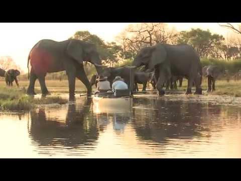 canoeing with elephants