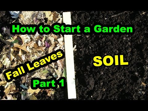 How to Start a Garden or Food Forest Permaculture with Composting Leaves. Part 1