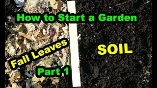How to Start a No Till Garden or Food Forest for beginners with Deep living Mulch. Part 1