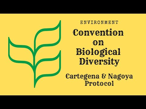 CONVENTION ON BIOLOGICAL DIVERSITY (CBD) AND PLANTLIFE INTER